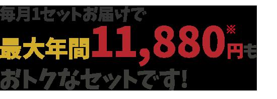 毎月1セットお届けで最大年間11664円もお得なセットです!
