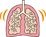 COPD(慢性閉塞性肺疾患)とは、気道や肺の細胞などが壊れることによって、肺の機能が悪くなり、スムーズに呼吸ができなくなる病気です。