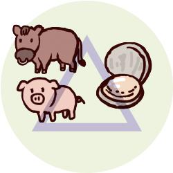 牛・豚肉、貝類
