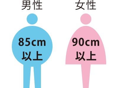 男性は85cm以上、女性は90cm以上がメタボの可能性