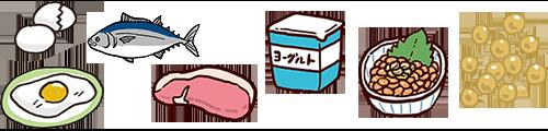 肉、魚、牛乳、乳製品、卵、大豆、大豆製品などにはたんぱく質が多く含まれる