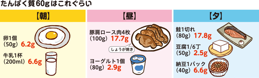 朝昼夕の食事のたんぱく質60gの量